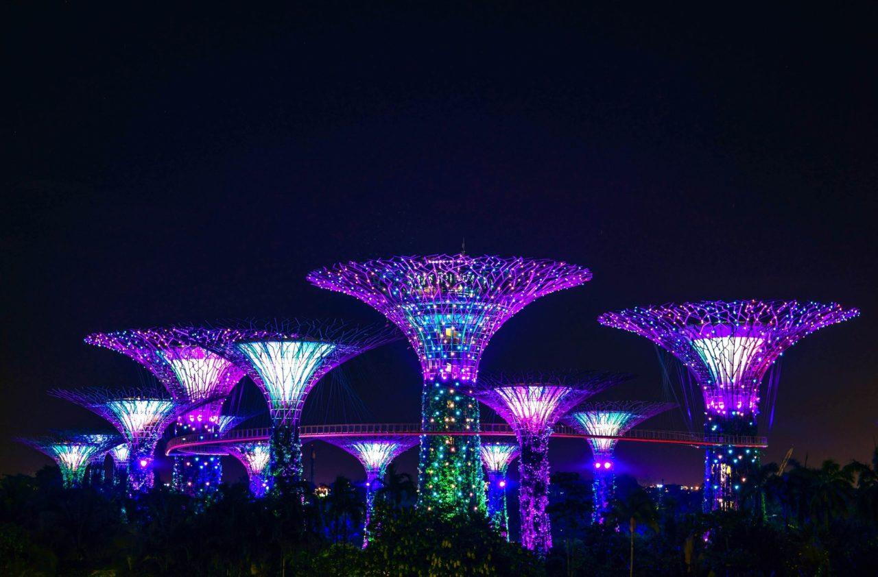 singapore-flowers-1280x842.jpeg